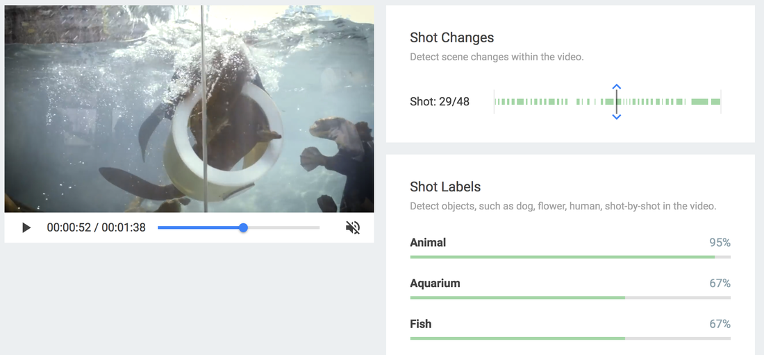Screenshot of Google's Video Intelligence API